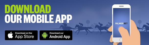 Palmerbet Android App
